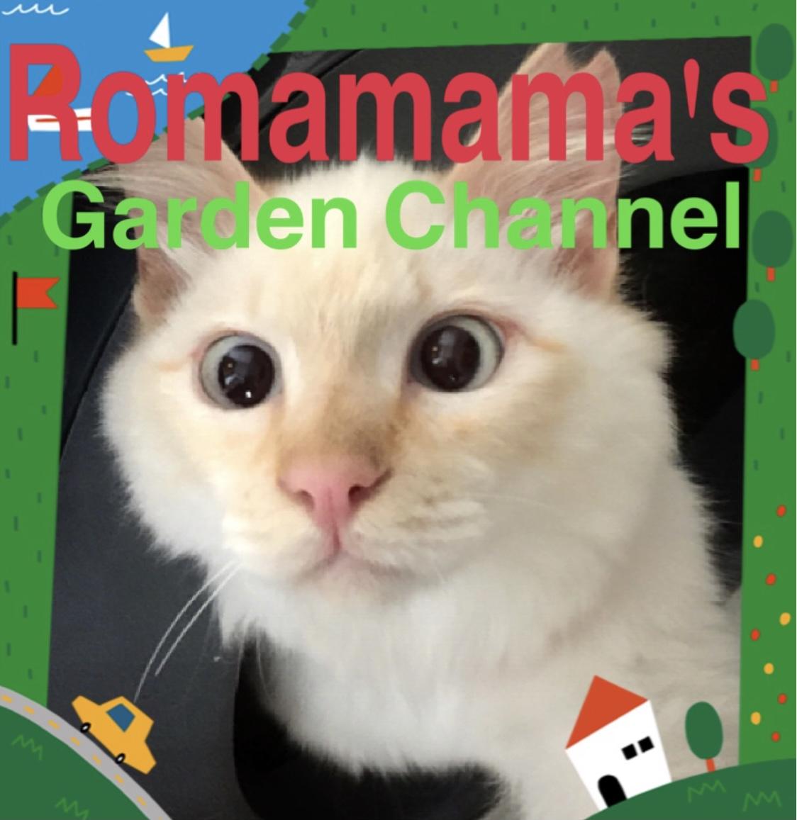 Romamama